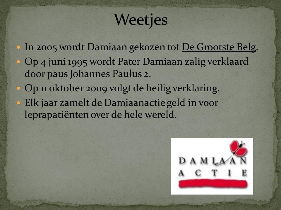 Weetjes In 2005 wordt Damiaan gekozen tot De Grootste Belg.