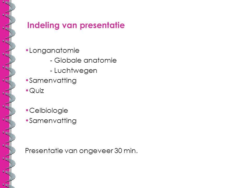 Indeling van presentatie