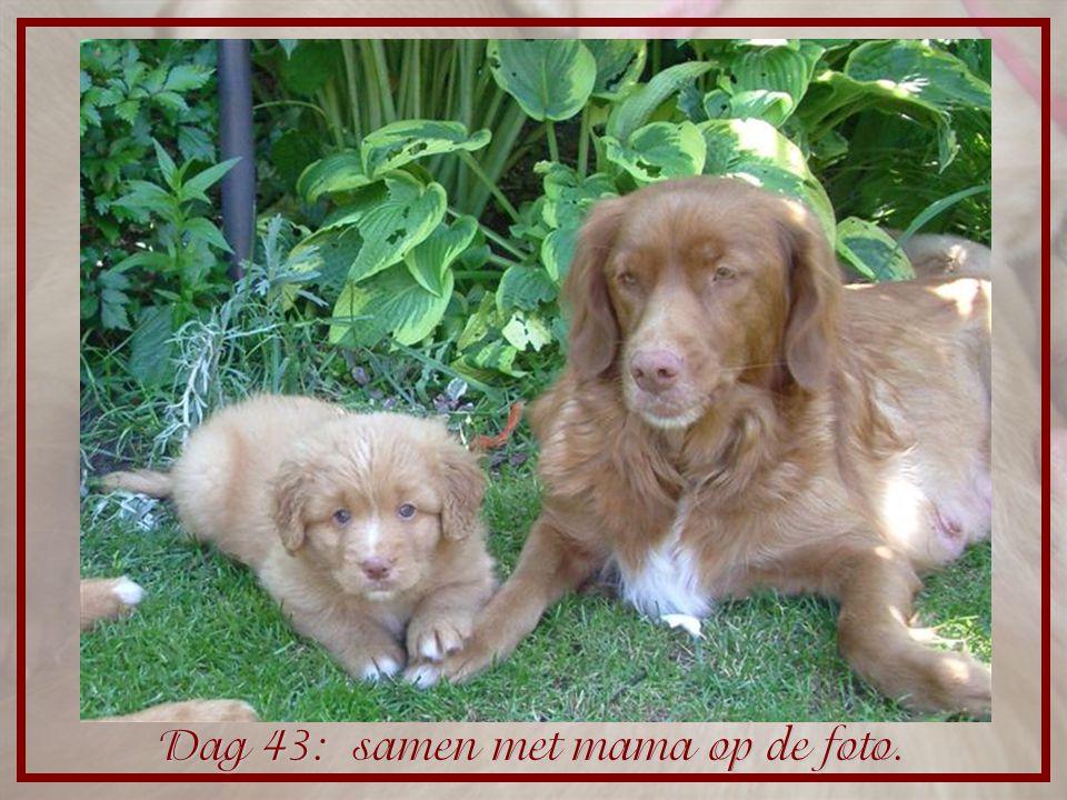 Dag 43: samen met mama op de foto.