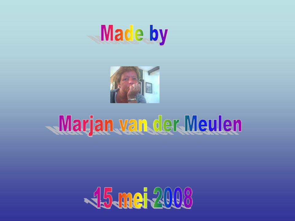 Made by Marjan van der Meulen 15 mei 2008