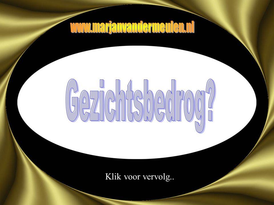 www.marjanvandermeulen.nl Gezichtsbedrog Klik voor vervolg..