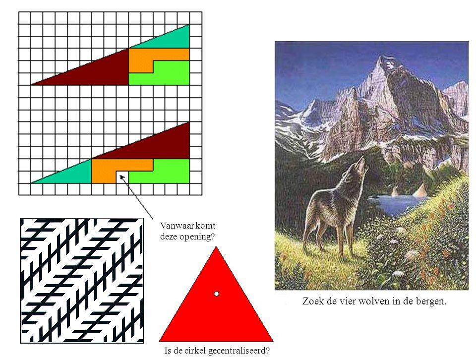 Zoek de vier wolven in de bergen.