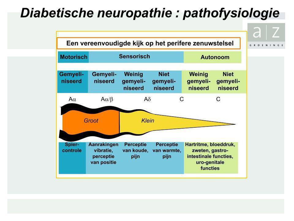 Diabetische neuropathie : pathofysiologie