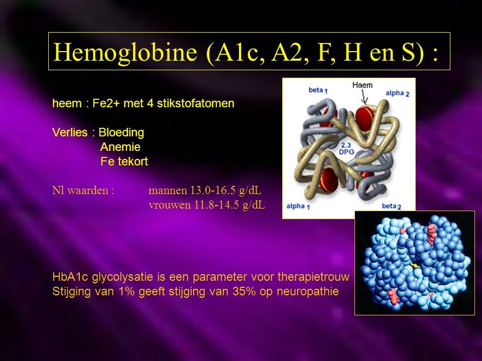 Hemoglobine (A1c, A2, F, H en S) :