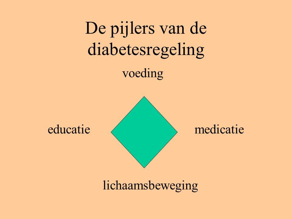 De pijlers van de diabetesregeling