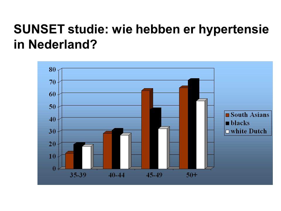 SUNSET studie: wie hebben er hypertensie in Nederland