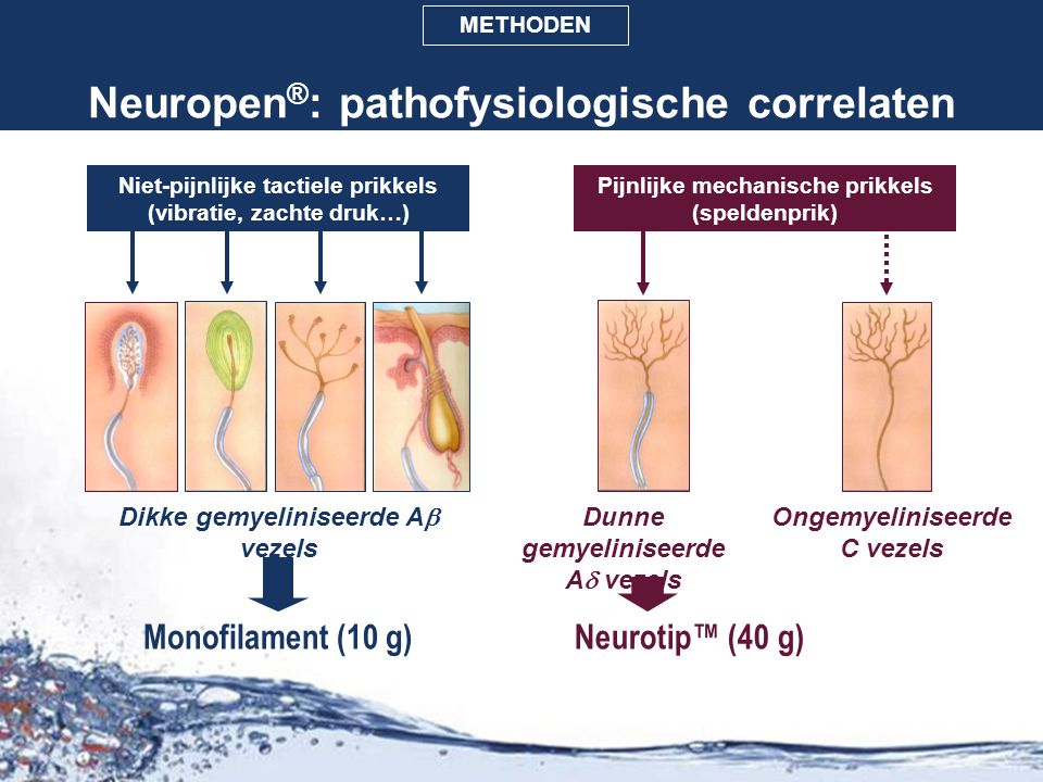Neuropen®: pathofysiologische correlaten
