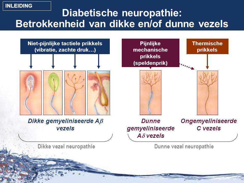 Diabetische neuropathie: Betrokkenheid van dikke en/of dunne vezels