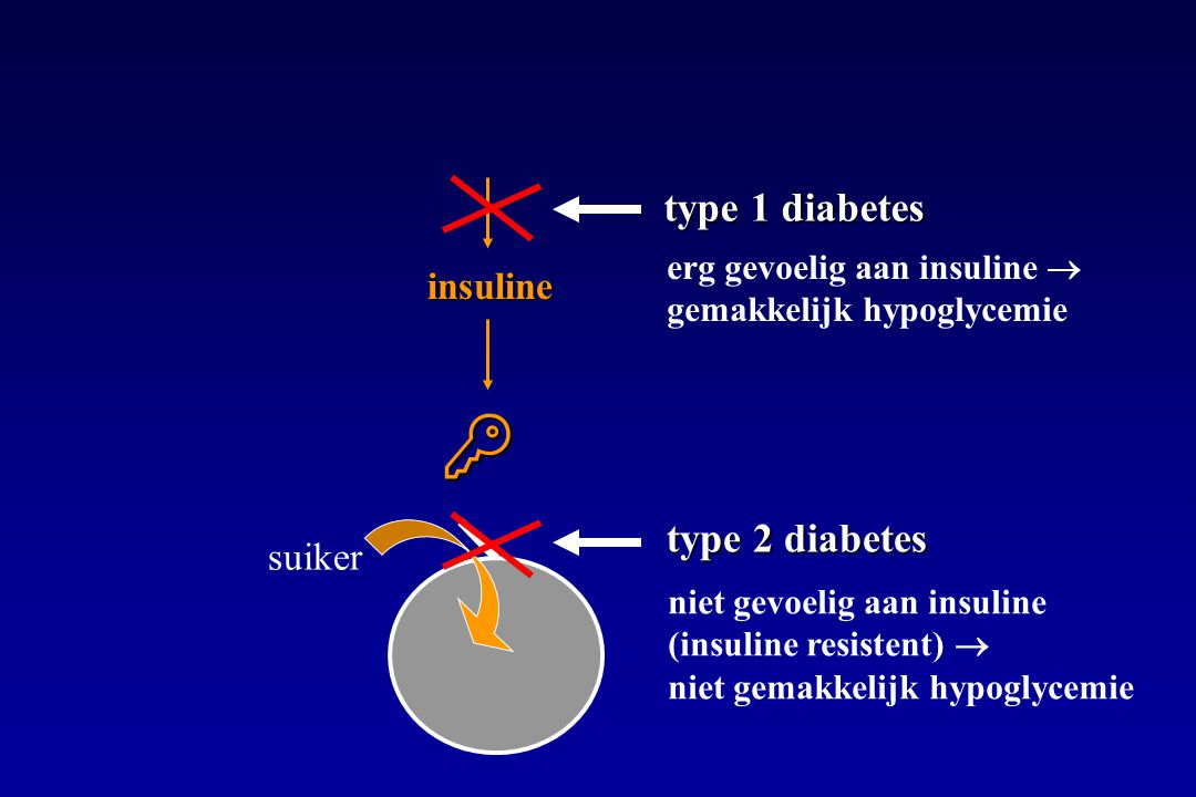  type 1 diabetes type 2 diabetes insuline suiker