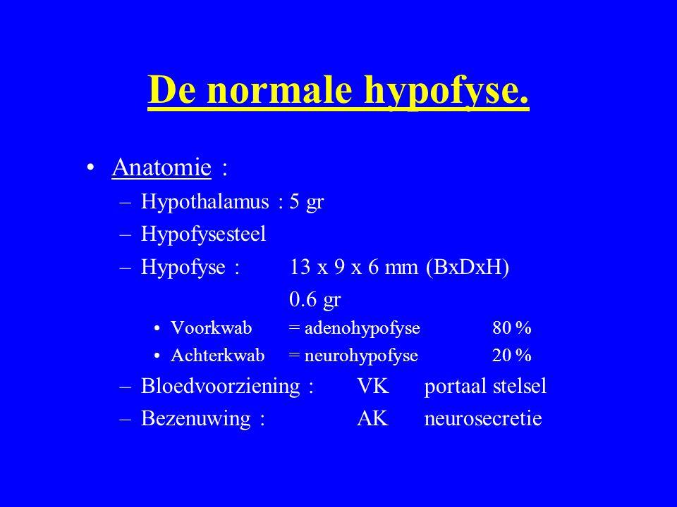 De normale hypofyse. Anatomie : Hypothalamus : 5 gr Hypofysesteel