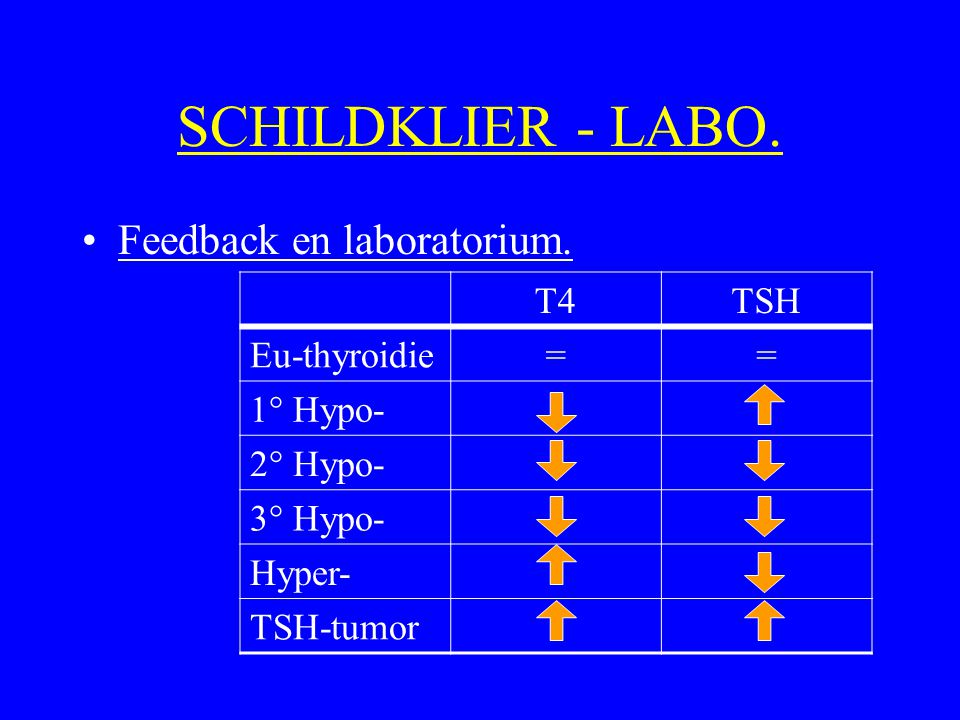 SCHILDKLIER - LABO. Feedback en laboratorium. T4 TSH Eu-thyroidie =