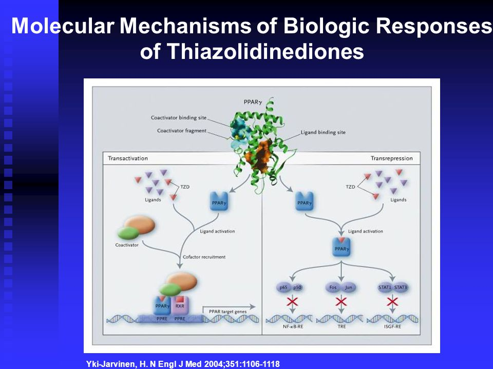 Molecular Mechanisms of Biologic Responses of Thiazolidinediones