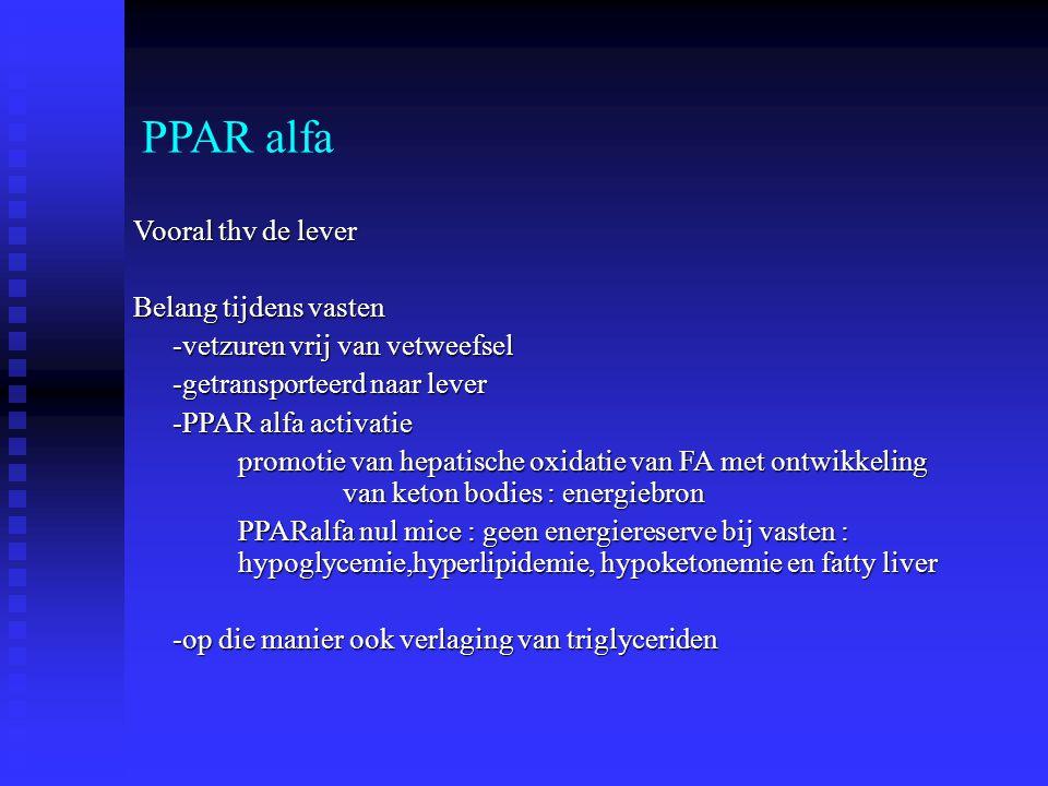 PPAR alfa Vooral thv de lever Belang tijdens vasten