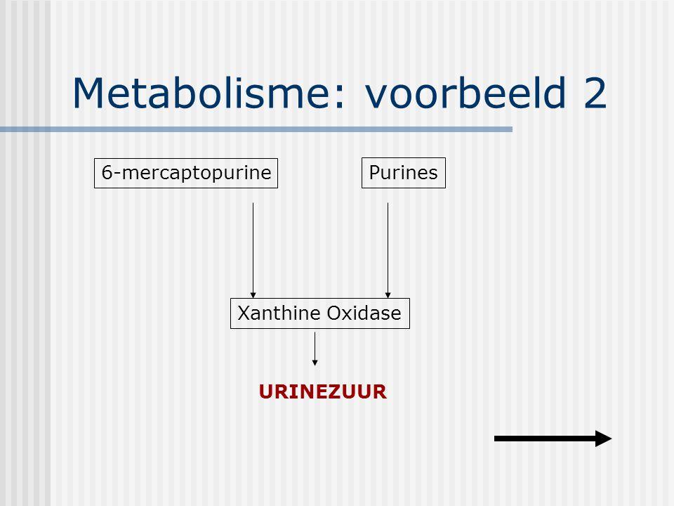 Metabolisme: voorbeeld 2