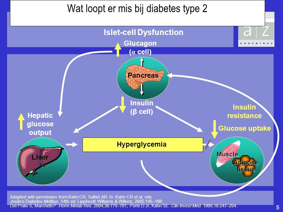 Wat loopt er mis bij diabetes type 2