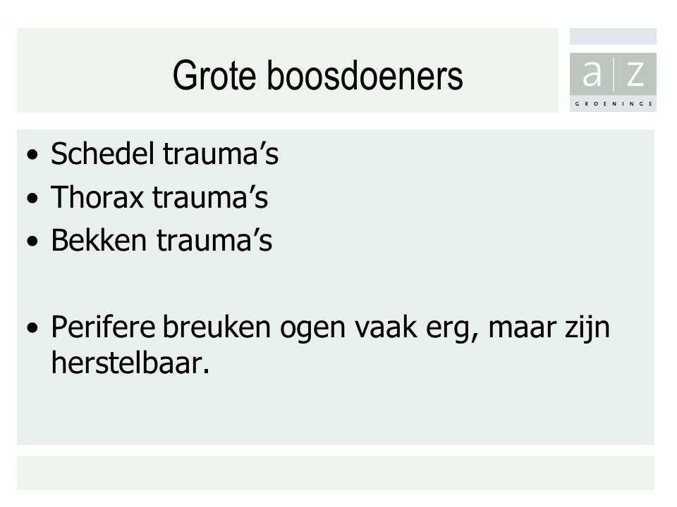 Grote boosdoeners Schedel trauma's Thorax trauma's Bekken trauma's