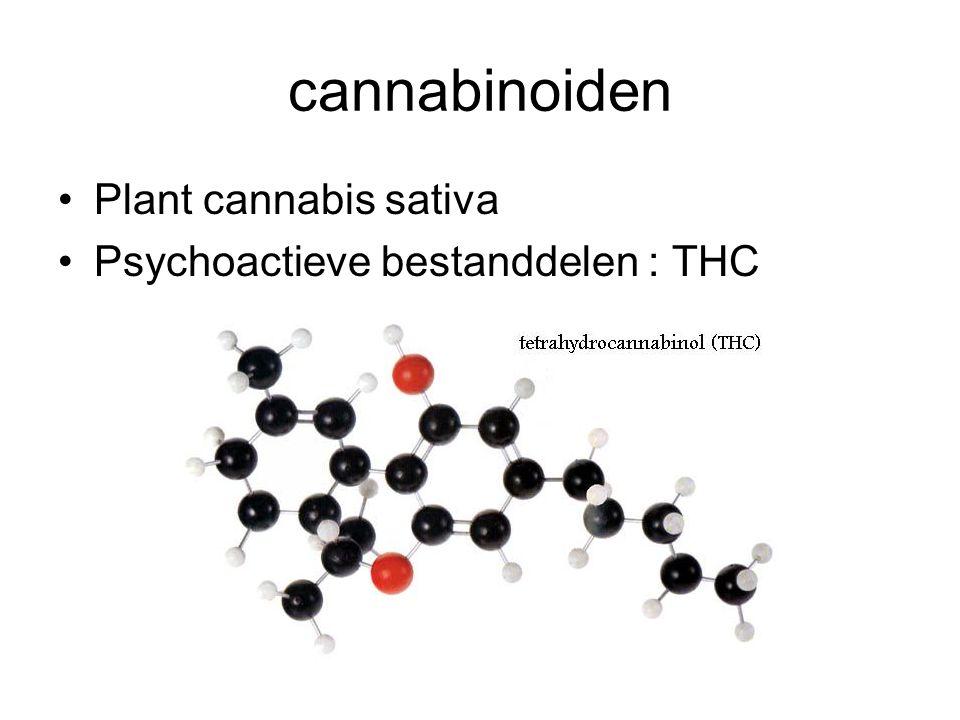 cannabinoiden Plant cannabis sativa Psychoactieve bestanddelen : THC