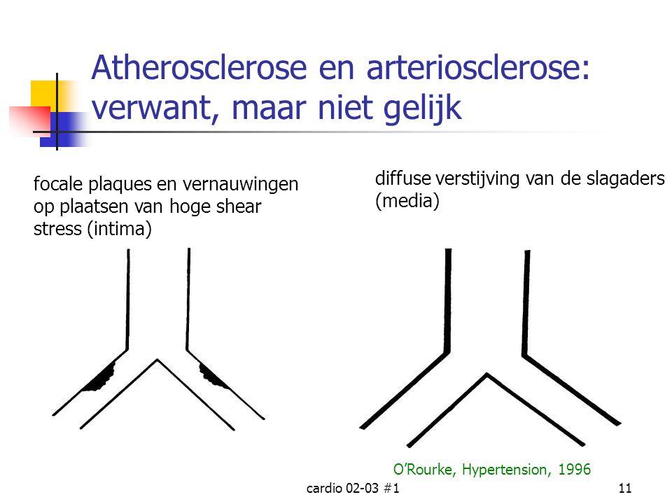 Atherosclerose en arteriosclerose: verwant, maar niet gelijk