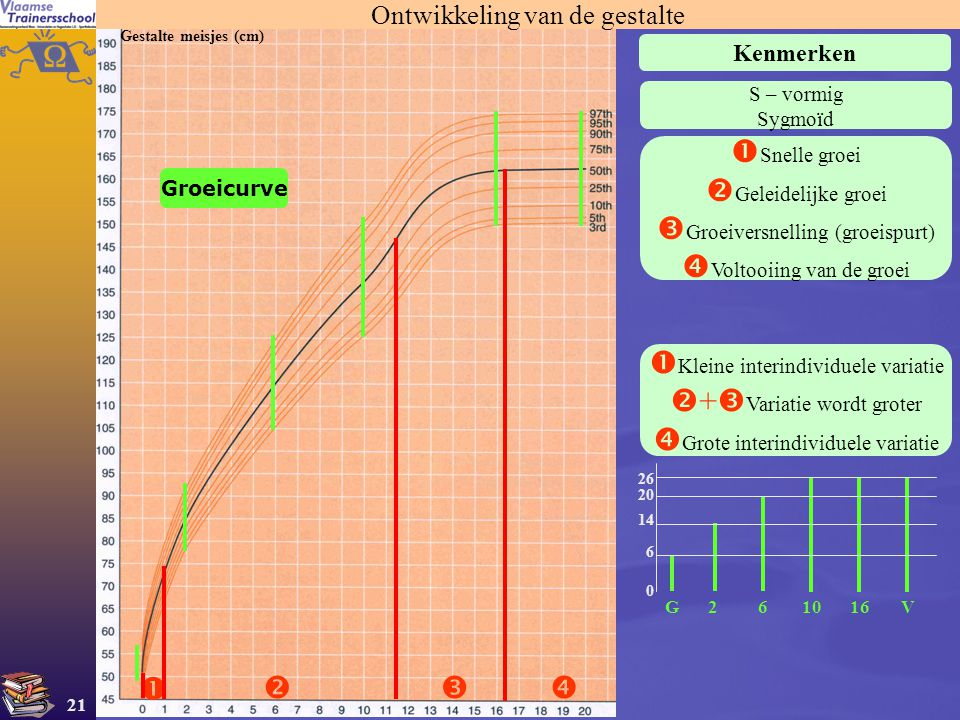 Groeiversnelling (groeispurt) Voltooiing van de groei