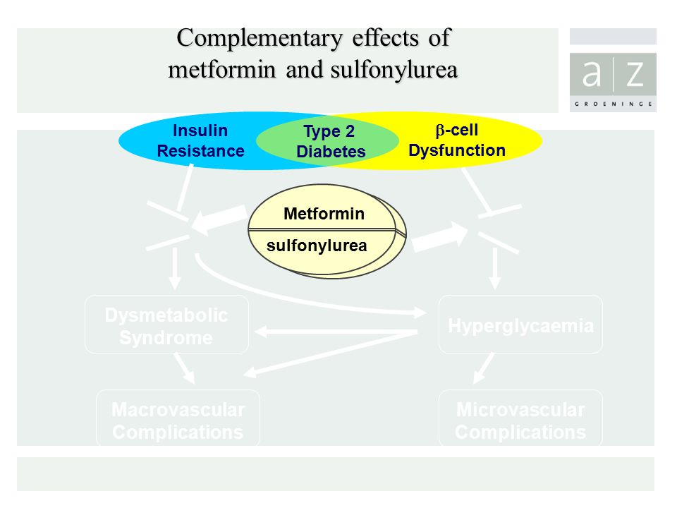 Complementary effects of metformin and sulfonylurea