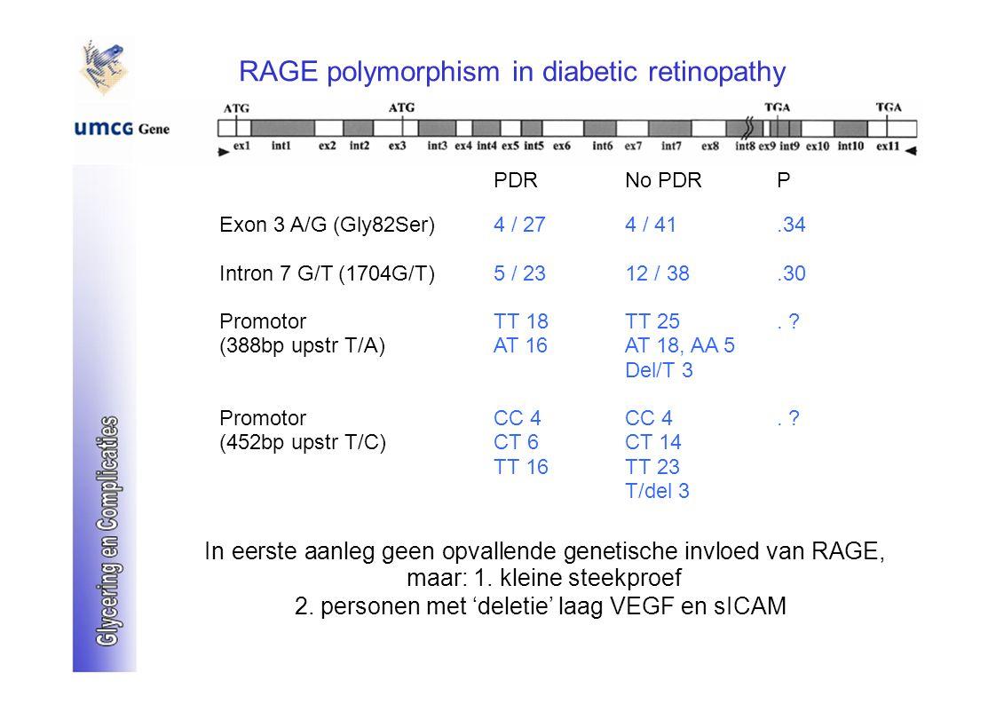 RAGE polymorphism in diabetic retinopathy