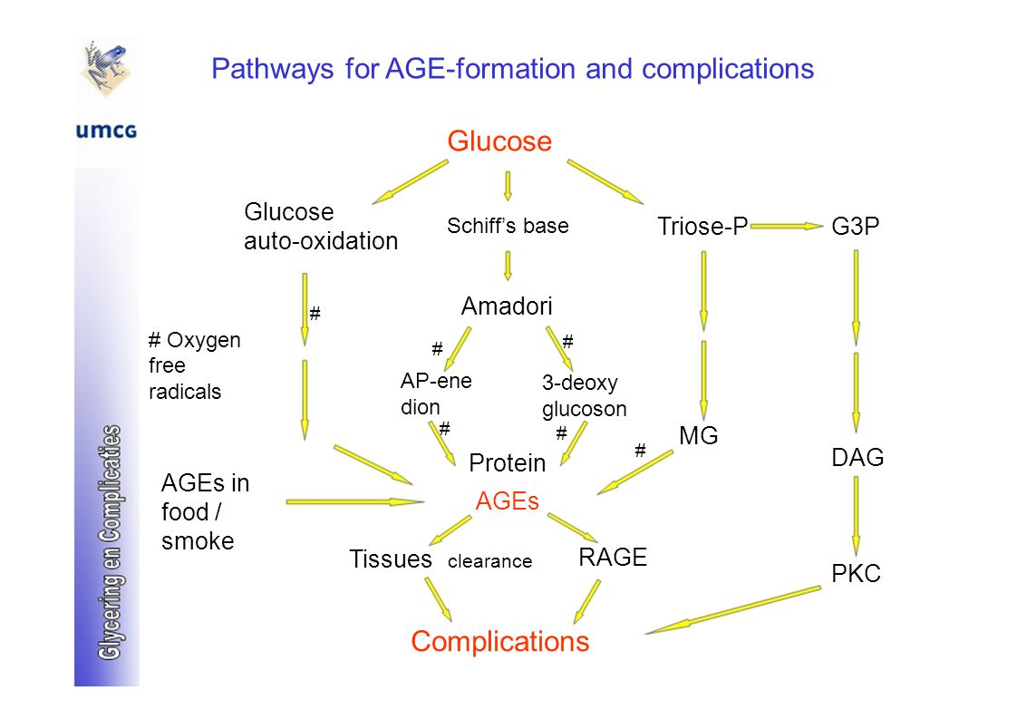 Pathways for AGE-formation and complications