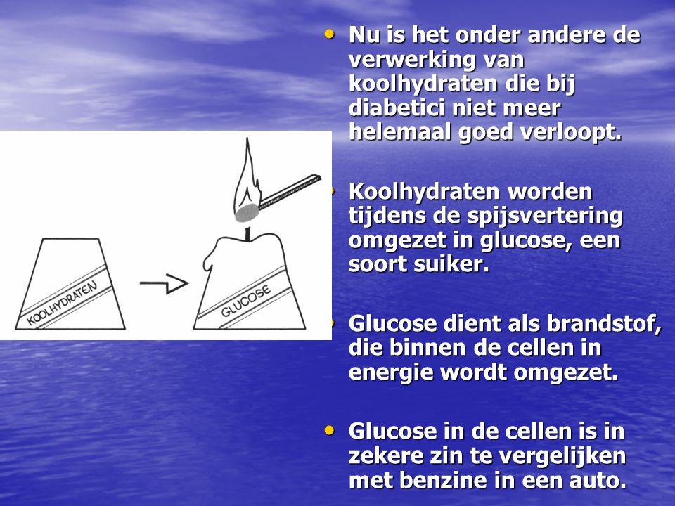 Nu is het onder andere de verwerking van koolhydraten die bij diabetici niet meer helemaal goed verloopt.