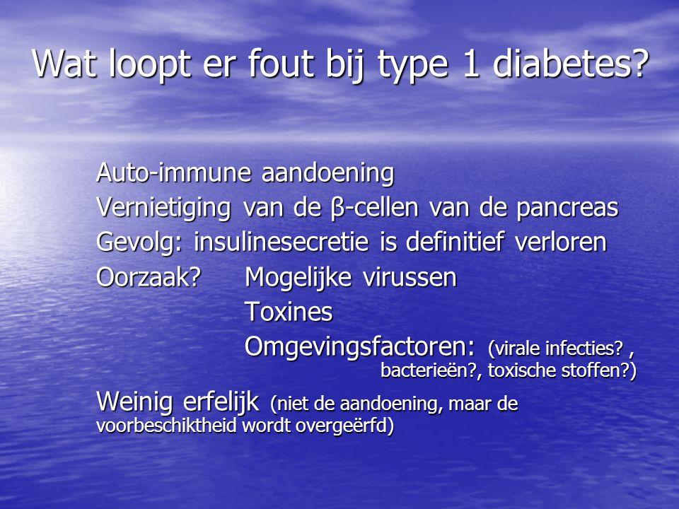 Wat loopt er fout bij type 1 diabetes