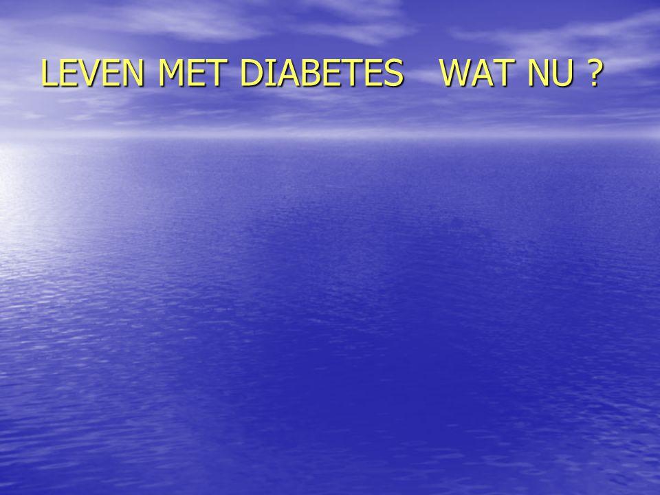 LEVEN MET DIABETES WAT NU