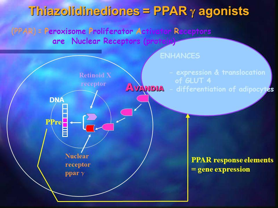 Thiazolidinediones = PPAR  agonists