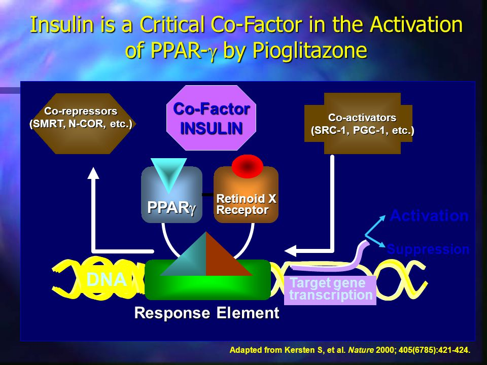 Insulin is a Critical Co-Factor in the Activation of PPAR-g by Pioglitazone