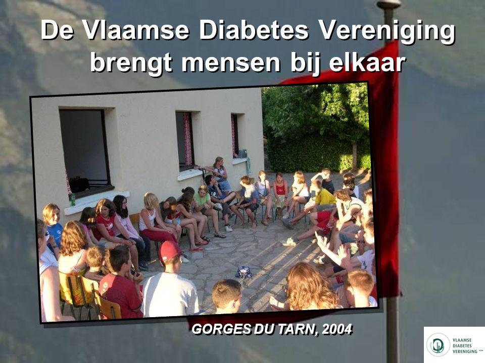 De Vlaamse Diabetes Vereniging brengt mensen bij elkaar