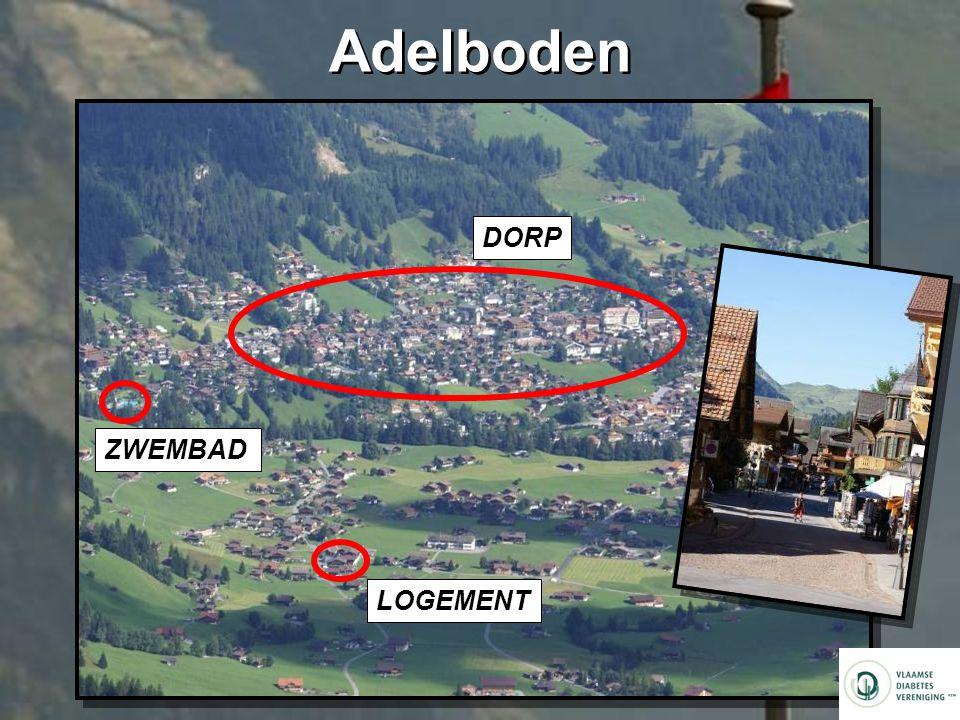 Adelboden DORP ZWEMBAD LOGEMENT