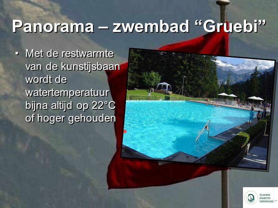 Panorama – zwembad Gruebi