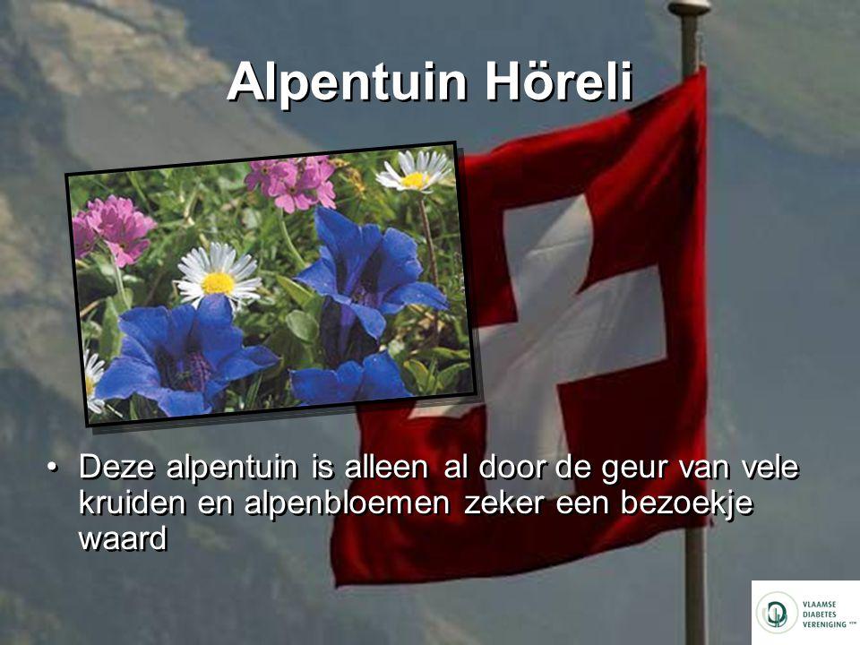 Alpentuin Höreli Deze alpentuin is alleen al door de geur van vele kruiden en alpenbloemen zeker een bezoekje waard.