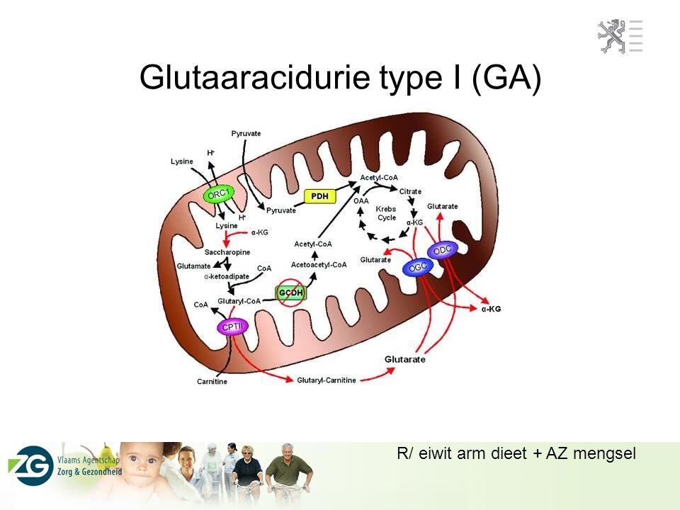 Glutaaracidurie type I (GA)