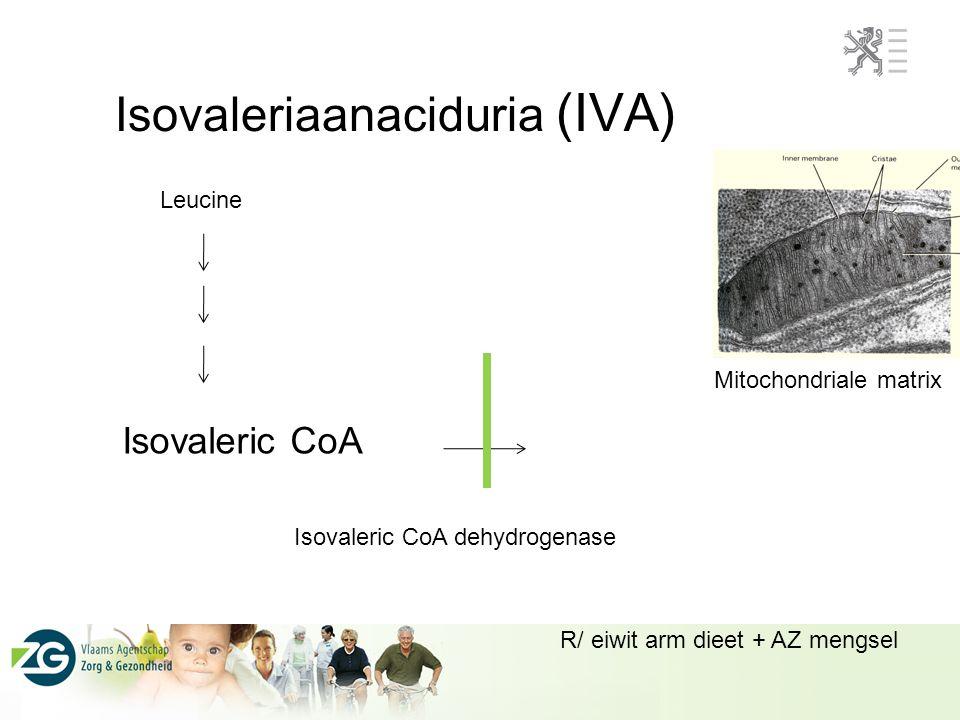 Isovaleriaanaciduria (IVA)