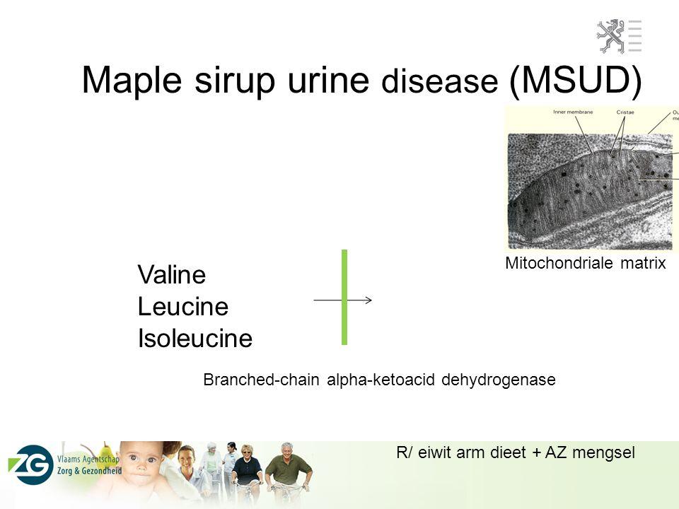 Maple sirup urine disease (MSUD)