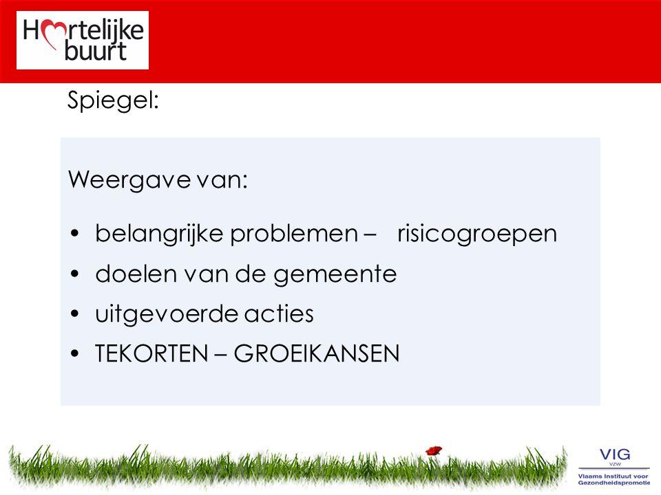 Spiegel: Weergave van: belangrijke problemen – risicogroepen. doelen van de gemeente. uitgevoerde acties.