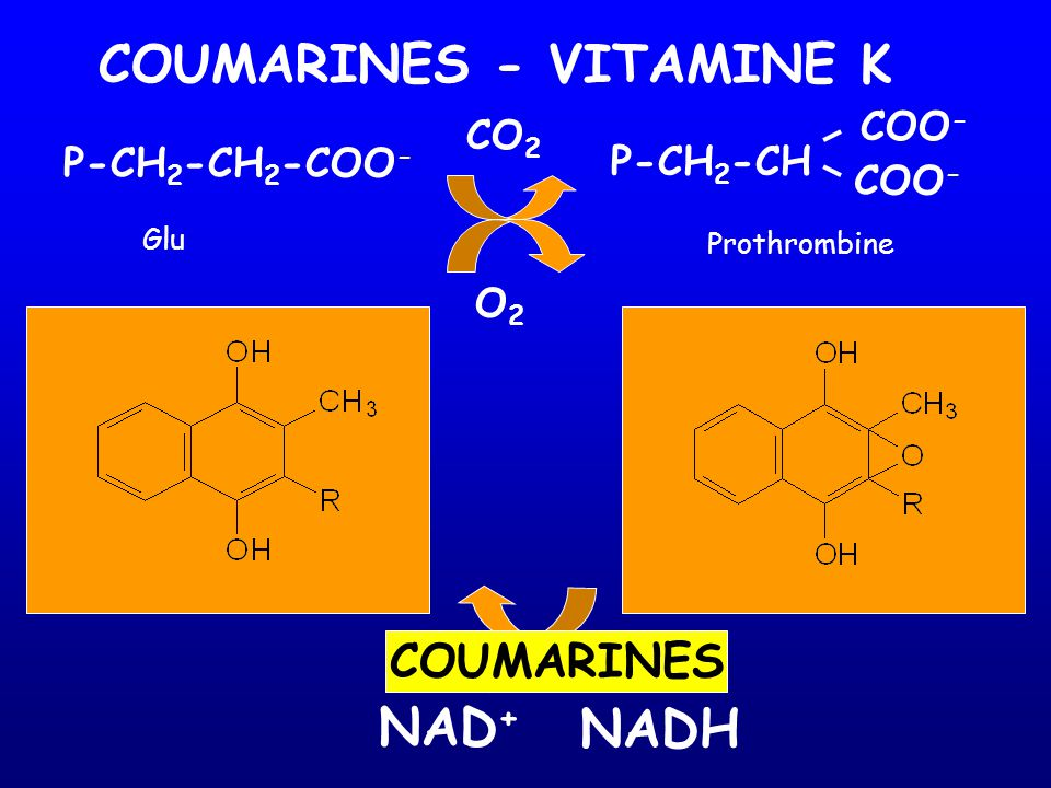 COUMARINES - VITAMINE K