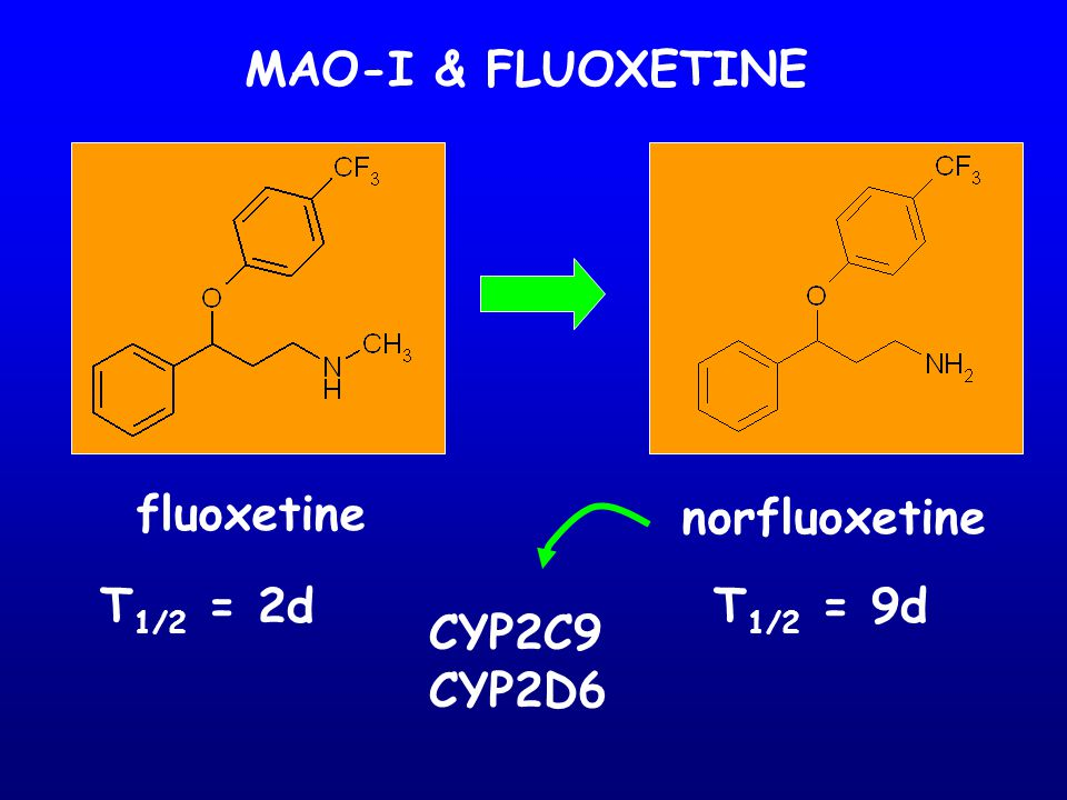 MAO-I & FLUOXETINE fluoxetine norfluoxetine T1/2 = 2d T1/2 = 9d CYP2C9 CYP2D6