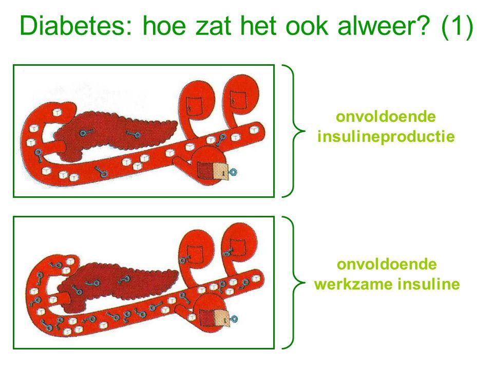Diabetes: hoe zat het ook alweer (1)