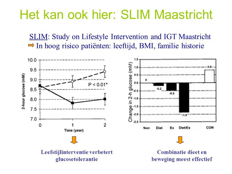 Het kan ook hier: SLIM Maastricht