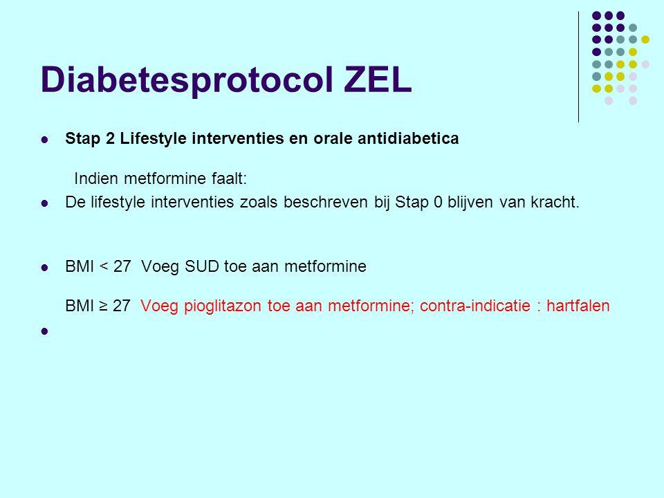 Diabetesprotocol ZEL Stap 2 Lifestyle interventies en orale antidiabetica Indien metformine faalt: