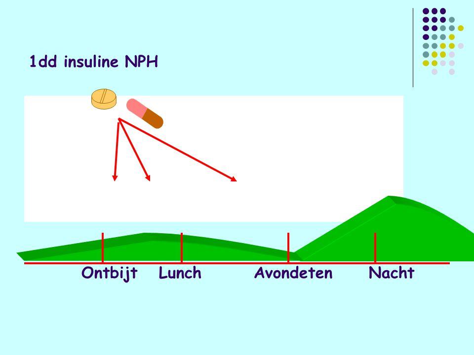 1dd insuline NPH Ontbijt Lunch Avondeten Nacht