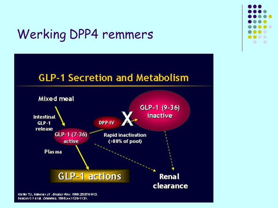Werking DPP4 remmers