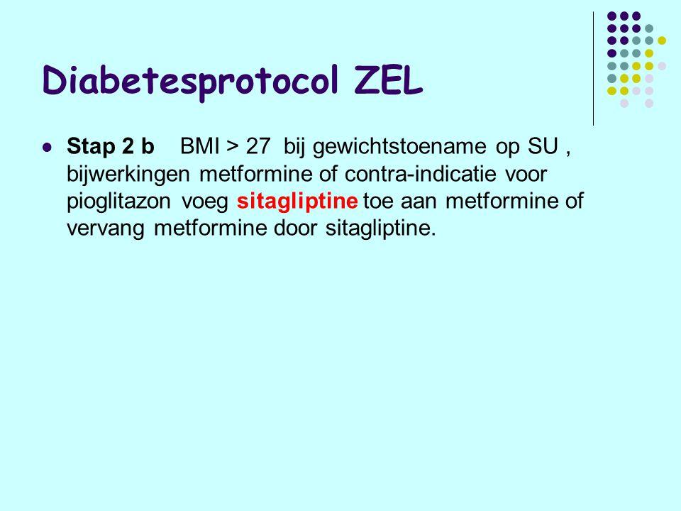 Diabetesprotocol ZEL
