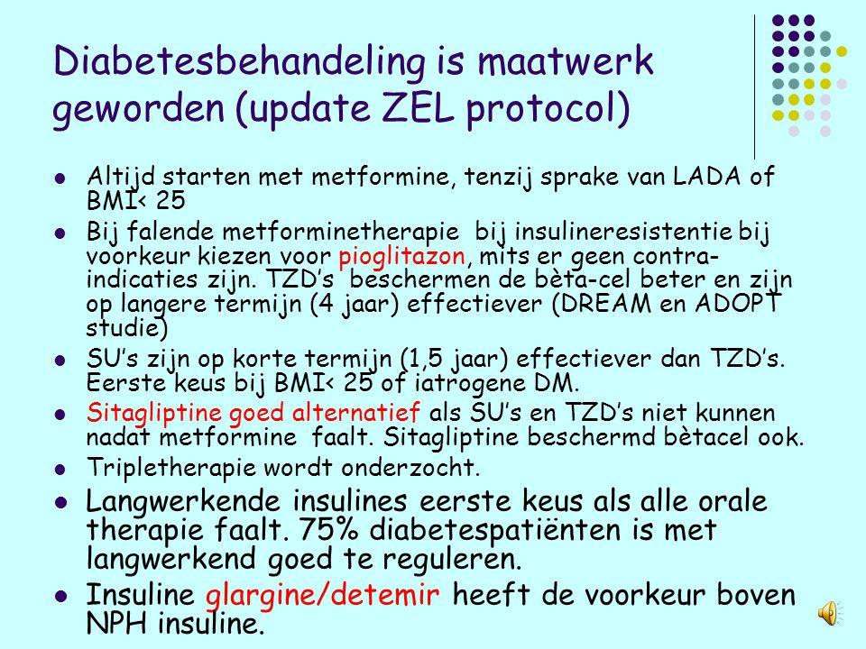 Diabetesbehandeling is maatwerk geworden (update ZEL protocol)