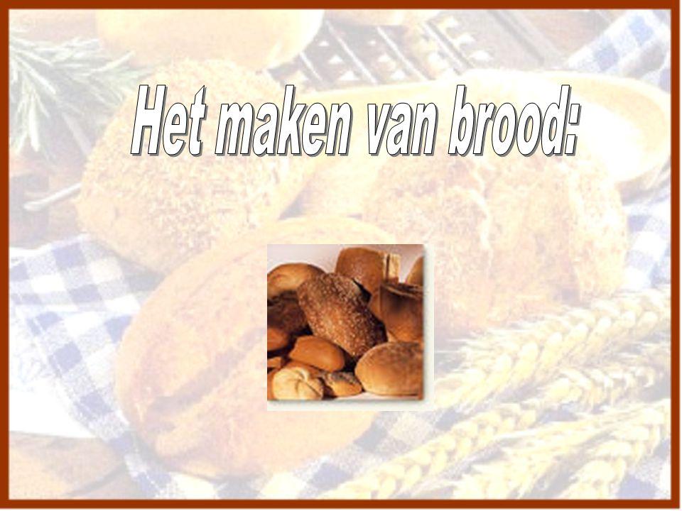 Het maken van brood: