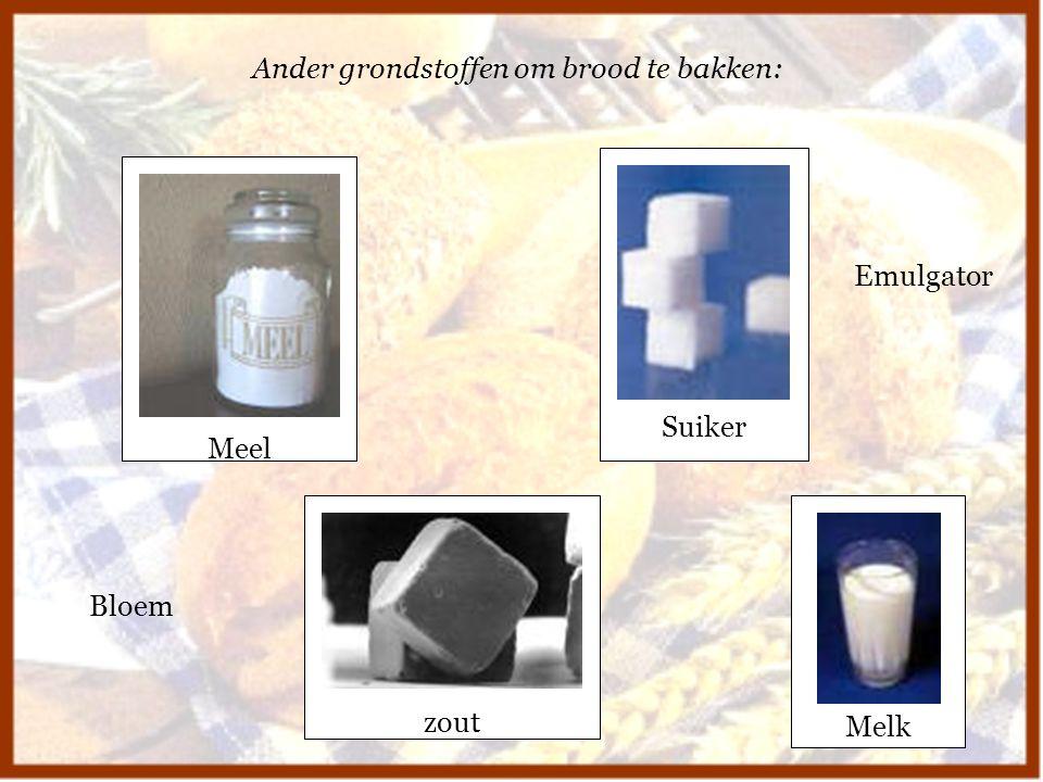 Ander grondstoffen om brood te bakken:
